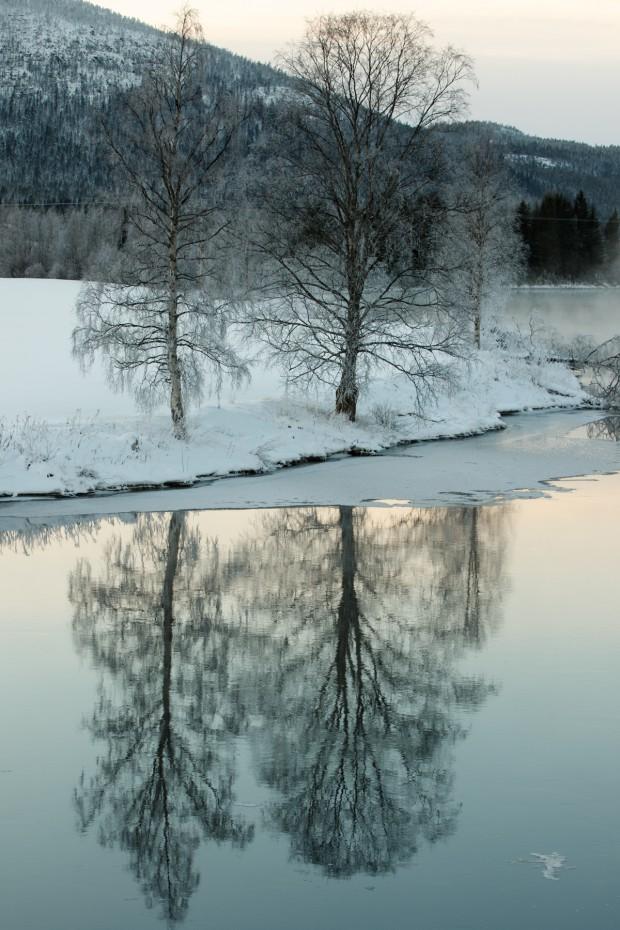 En kall vinterdag-5