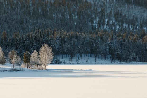 En kall vinterdag-9